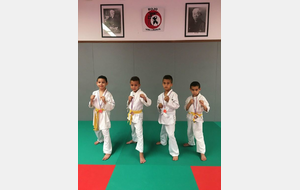 KARATE : CHAMPIONNAT DE LIGUE POUSSINS