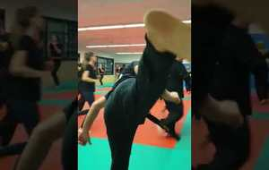KRAV MAGA - SELF DEFENSE 2019 2020